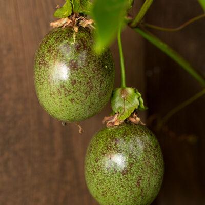 Früchte der Passionsblume