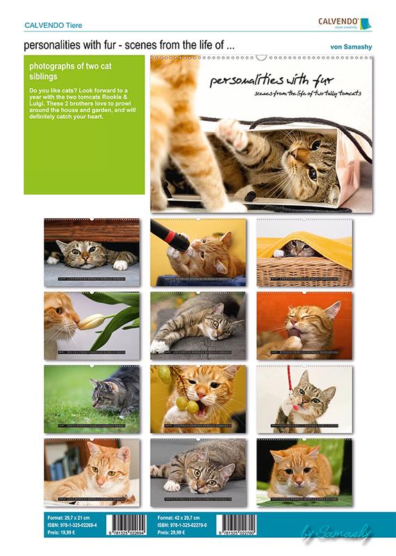 catalog_427289