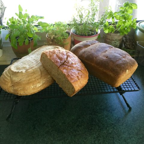 Brotbacksonntag