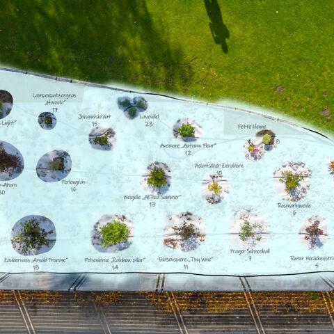 Unser Vorgarten